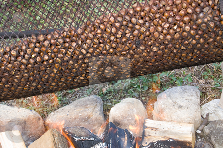 Roasting chestnut machine close up stock photo, A traditional cylinder to roast chestnuts on the fire by Roberto Marinello