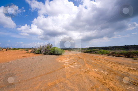 Hato plateau curacao stock photo, Flat hato plateau curacao with a dark cloudy sky and  red brown earth visable by Karin Claus