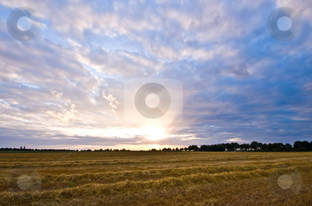 Rural sunset stock photo, Fresh mowed farmland with a nice pastel sunset by Karin Claus