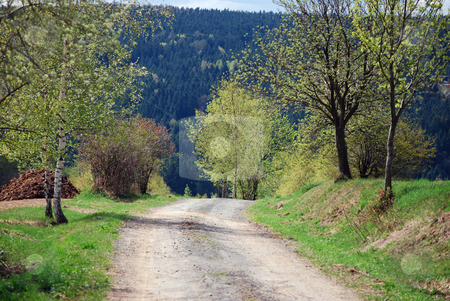 Road in spring stock photo, A picture form czech republic by Sarka