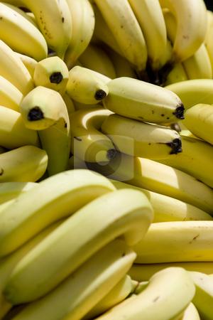 Bananen stock photo, Bananen im Sonnenlicht auf einem Marktstand by Stefan Franz