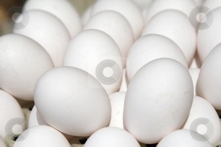 Eier / eggs stock photo, Frische Eier im Sonnenlicht auf einem Marktstand by Stefan Franz