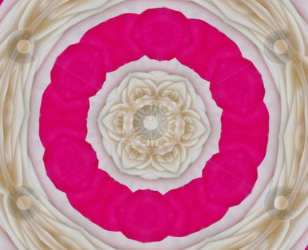 Rose Petals stock photo, Pink and beige abstract mandala resembles rose petals by Sandra Fann