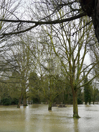 Flooded Picnic area Essex UK stock photo, Witham, Essex, UK Feb 2009 heavy overnight rain on top of melting snow has caused the local river to burst its banks, flooding several roads, carparks and most of the riverside green areas and pathways by Helen Shorey