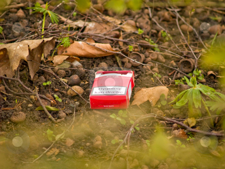 Environmental awarness - Empty cigarette pack in bushes stock photo, Environmental awarness - Empty cigarette pack lying in the bush by Phillip Dyhr Hobbs