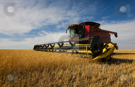 Combine harvesting stock photo, A modern combine harvester working on a wheat crop by Steve Mcsweeny