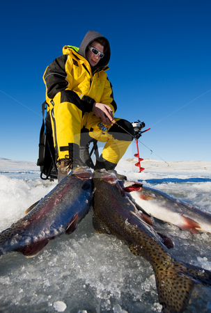 Fishing success stock photo, Ice fisherman with his catch of rainbow trout on the ice by Steve Mcsweeny