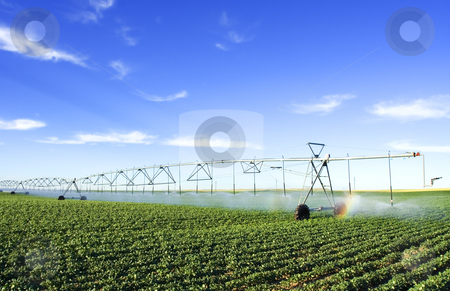 Farming tool stock photo, Irrigating a potato field by Steve Mcsweeny