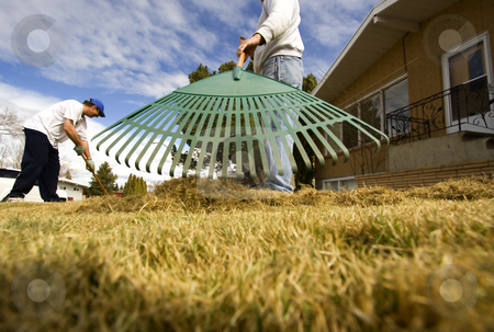 Lawn maintenance stock photo, Two men doing some spring yard maintenance by Steve Mcsweeny