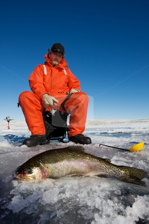 Catch of the day stock photo, Ice fisherman with a large rainbow trout on the ice by Steve Mcsweeny