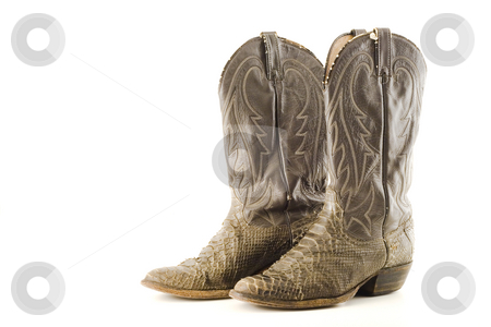 Cowboy boots stock photo, Snake skin cowboy boots by Steve Mcsweeny