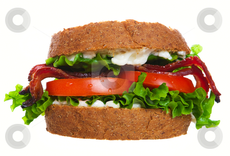 BLT stock photo, A large delicious blt sandwich on a white background by Steve Mcsweeny