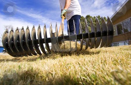 Yard maintenance stock photo, Man doing spring yard maintenance (focus on rake) by Steve Mcsweeny