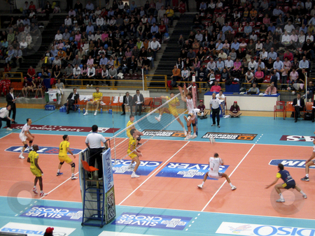 Volleyball - Trentino Volley vs Verona stock photo, Trentino Volley and Verona playing during a game of the Italian Championship by Alessandro Rizzolli