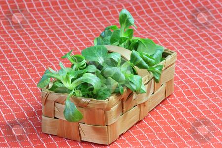Corn salad stock photo, Fresh corn salad in a basket on red background by Birgit Reitz-Hofmann