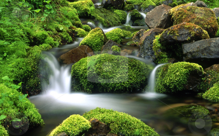 Mountain stream stock photo, Mountain stream by Ingvar Bjork