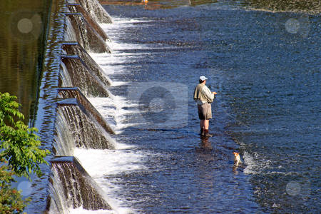 Retirement stock photo, A man fly fishing with his pet companion, in the shallow runoff from a weir. by Adam Goss