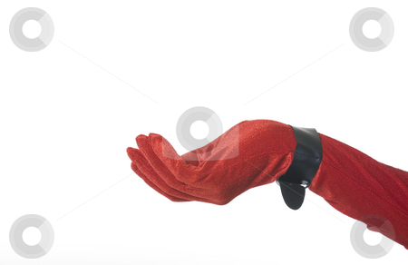 Red Velvet Hand holding nothing stock photo, Red velvet glove with black buckle at wrist.  Graceful, feminine, hand ready to hold your product.  Christmas theme with room for copy on white background. by Brenda Carson