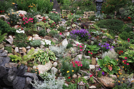 Extreme Gardening stock photo, A beautiful perennial garden planted on a difficult slope.  Extreme gardening at it's best! by Brenda Carson