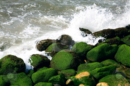 Pounding Surf stock photo, The pounding surf crashes against green & black algae covered rocks. Pacific Ocean, Puerto Vallarta, Mexico. by Brenda Carson