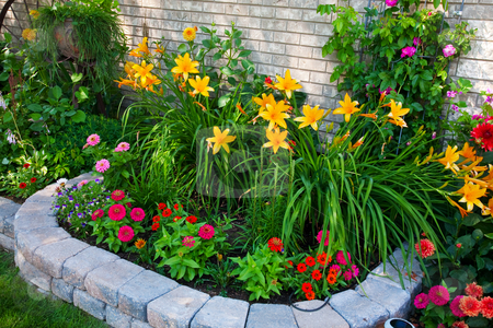 Colorful Flower Bed stock photo, A stone edged, urban flower bed that packs a punch.  Small on size, but big on color! by Brenda Carson