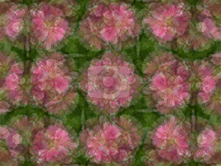 Floral Background Pattern stock photo, Floral Background Pattern by Dazz Lee Photography