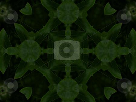 Garden Greens - Background Pattern stock photo, Background Pattern by Dazz Lee Photography