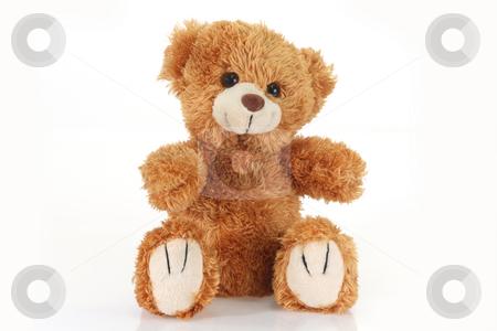 Teddy bear stock photo, Cute teddy bear on bright background by Birgit Reitz-Hofmann