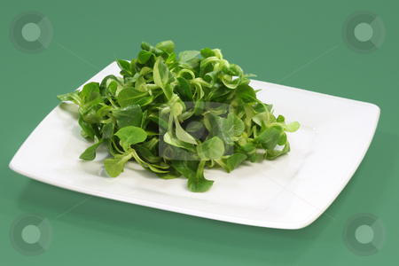 Field salad stock photo, Field salad on a plate on green background by Birgit Reitz-Hofmann