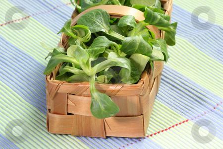 Field salad stock photo, Fresh corn salad in a basket on green background by Birgit Reitz-Hofmann