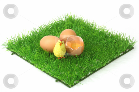 Decorative brown eggs stock photo, Brown eggs on a decorative grass meadow with bright background by Birgit Reitz-Hofmann