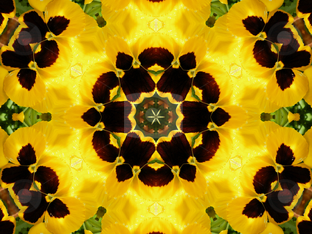 Golden Pansy Dreams - Background Pattern stock photo, Golden Pansy Dreams- Background Pattern by Dazz Lee Photography