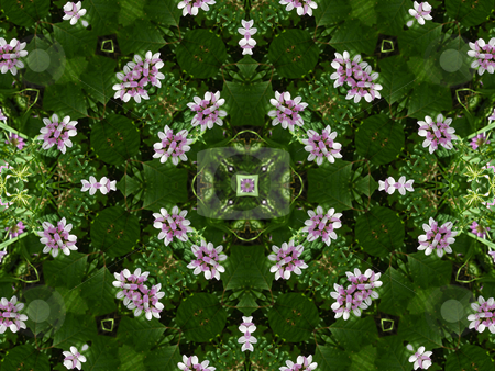 Pretty Petals - Floral Background Pattern stock photo, Pretty Petals - Floral Background Pattern by Dazz Lee Photography