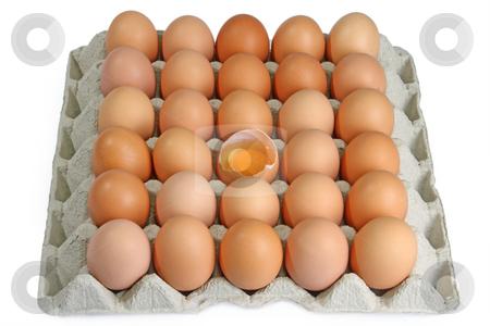 Fresh eggs stock photo, Brown eggs in detail on a tray by Birgit Reitz-Hofmann