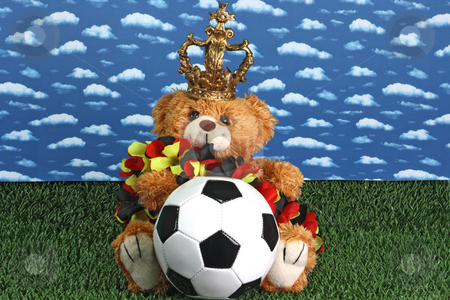 Soccer stock photo, Cute teddy bear with a soccerball onb right background by Birgit Reitz-Hofmann