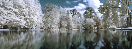 Infrared panoramic  landscape stock photo, Infrared panoramic  landscape with trees reflecting in lake by Laurent Dambies