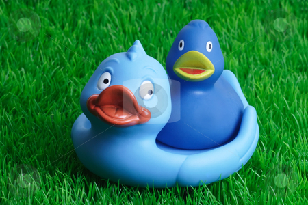 Rubber ducks stock photo, Blue rubber ducks bath toy on grass background by Birgit Reitz-Hofmann