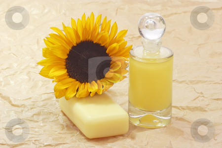 Bath lotion_2 stock photo, Bath lotion with sunflower on brown background by Birgit Reitz-Hofmann