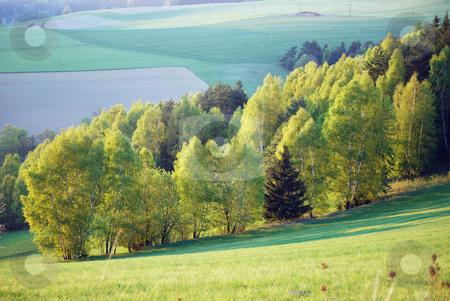 Landscape stock photo, Picture from czech landscape by Sarka