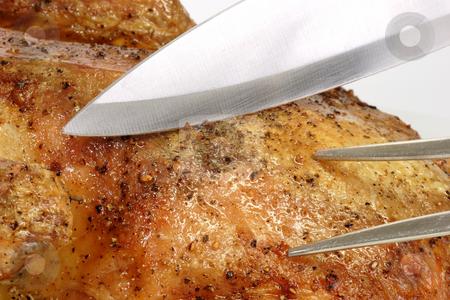 Roasted duck_6 stock photo, Fresh roasted duck on bright background by Birgit Reitz-Hofmann