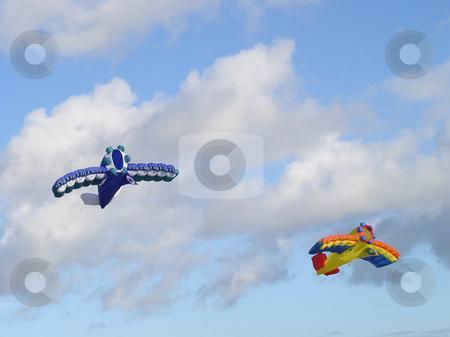 Stunt kites stock photo, Colourful stunt kite flying on a blue sky background by Birgit Reitz-Hofmann