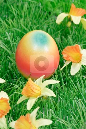 Colorful easter egg stock photo, Dyed easter egg on grass background by Birgit Reitz-Hofmann