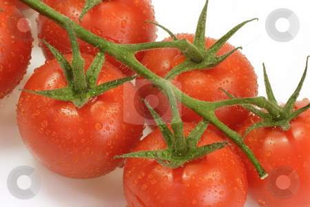 Tomatoes stock photo, Fresh tomatoes on bright background by Birgit Reitz-Hofmann
