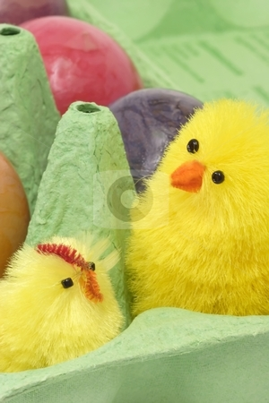 Together stock photo, Colorful eggs in a carton with toy chicken by Birgit Reitz-Hofmann