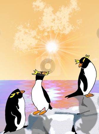 Penguins on Rocks stock photo, Rockhopper penguins chilling on the rocks as the sun sets over the ocean - a raster illustration. by Karen Carter