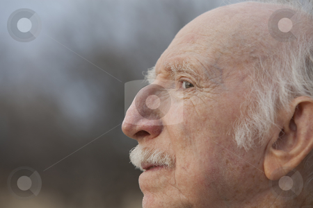 Senior Man in Profile stock photo, Extreme closeup of a senior man with a unique nose in profile by Scott Griessel