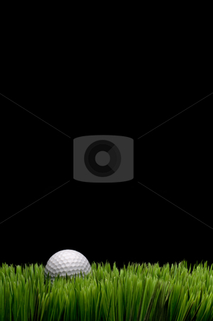 Vertical image of a white golf ball in green grass on a black  b stock photo, Vertical image of a white golf ball in green grass on a black  background with space for copy by Vince Clements