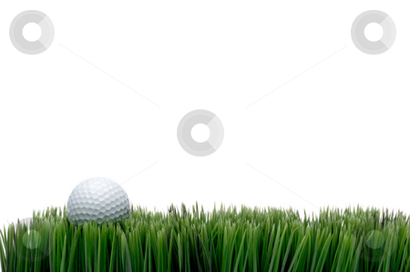 Horizontal image of a white golf ball in green grass on a white  stock photo, Horizontal image of a white golf ball in green grass on a white background with space for copy by Vince Clements