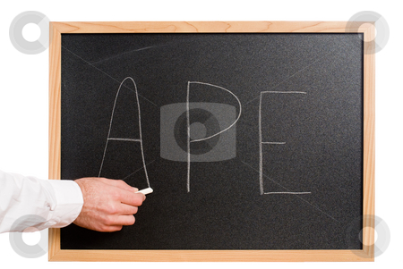 Education stock photo, Closeup of a teacher's hand holding a piece of chalk and spelling the word APE by Richard Nelson