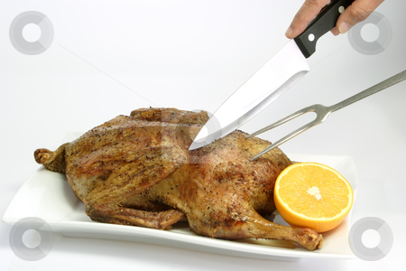 Roasted duck_11 stock photo, Fresh roasted duck on bright background by Birgit Reitz-Hofmann